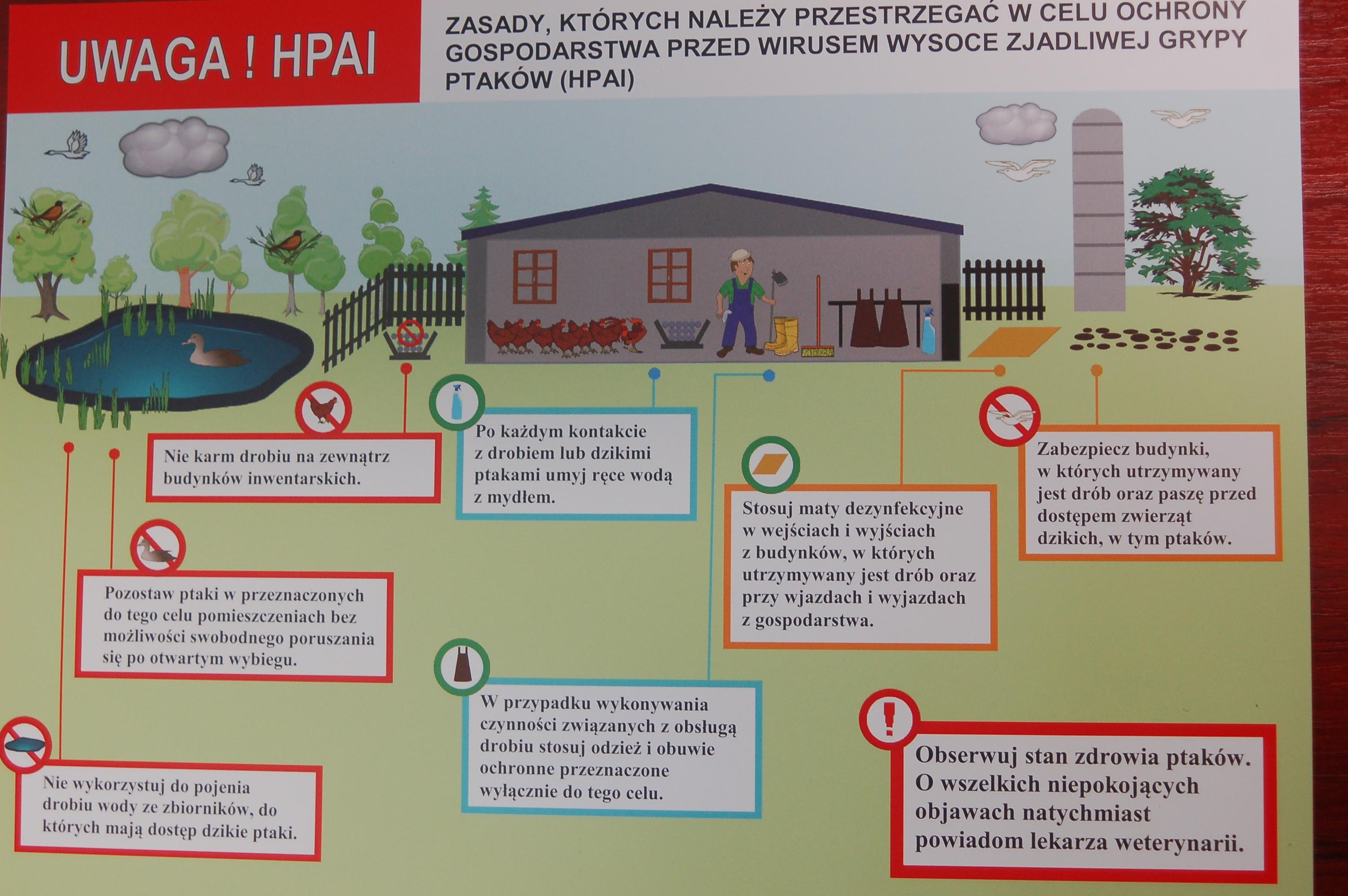 Baner: Ochrony gospodarstwa przed wysoce zjadliwą grypą ptaków (HPAI)